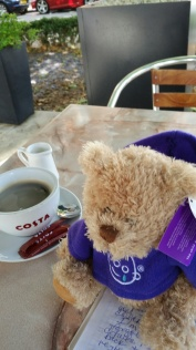 bear and coffee